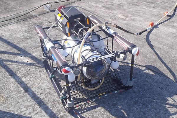 ROVによる調査